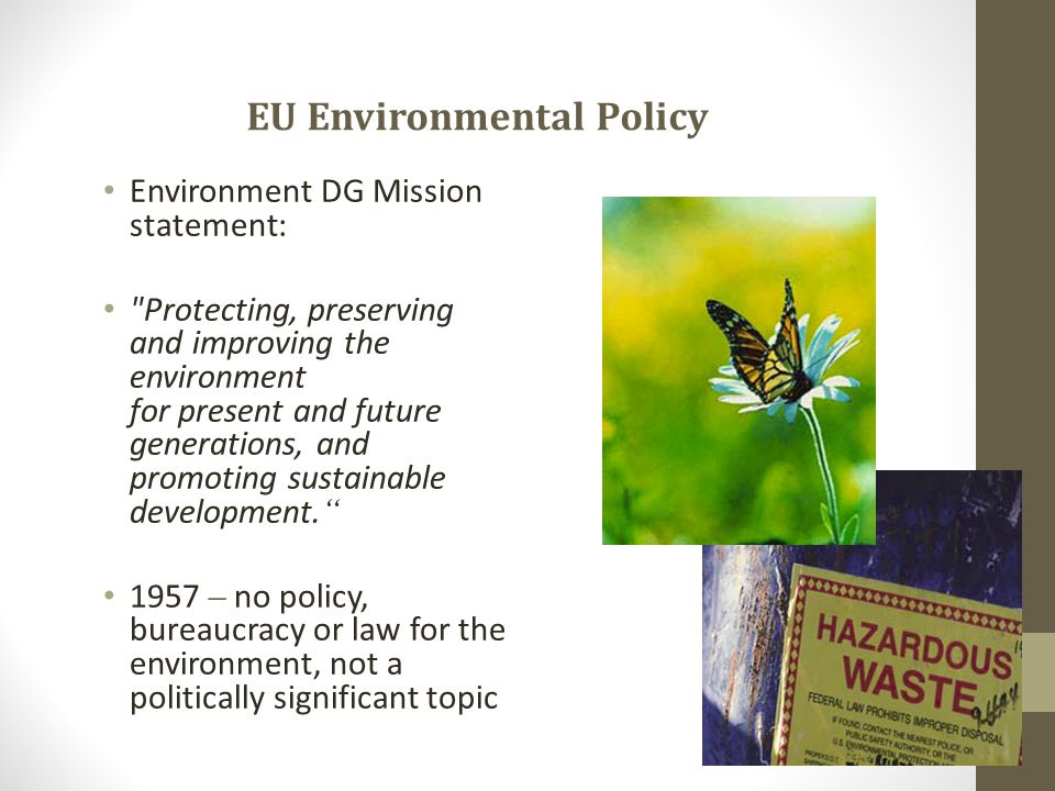 EU Environmental Policy Environment DG Mission statement: Protecting, preserving and improving the environment for present and future generations, and promoting sustainable development.