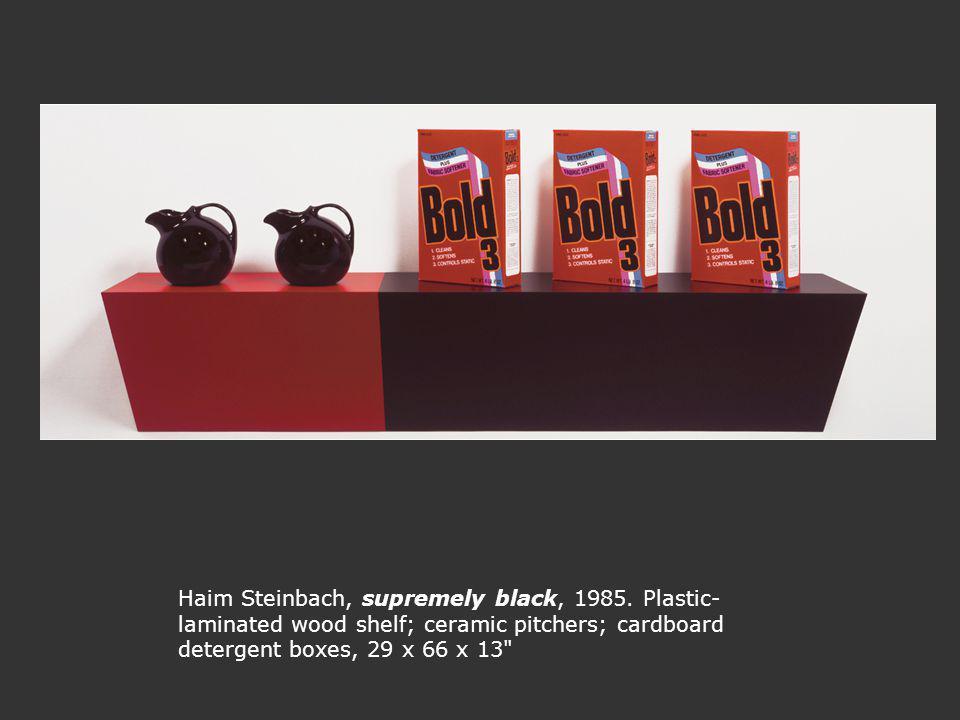 Haim Steinbach, supremely black, 1985.