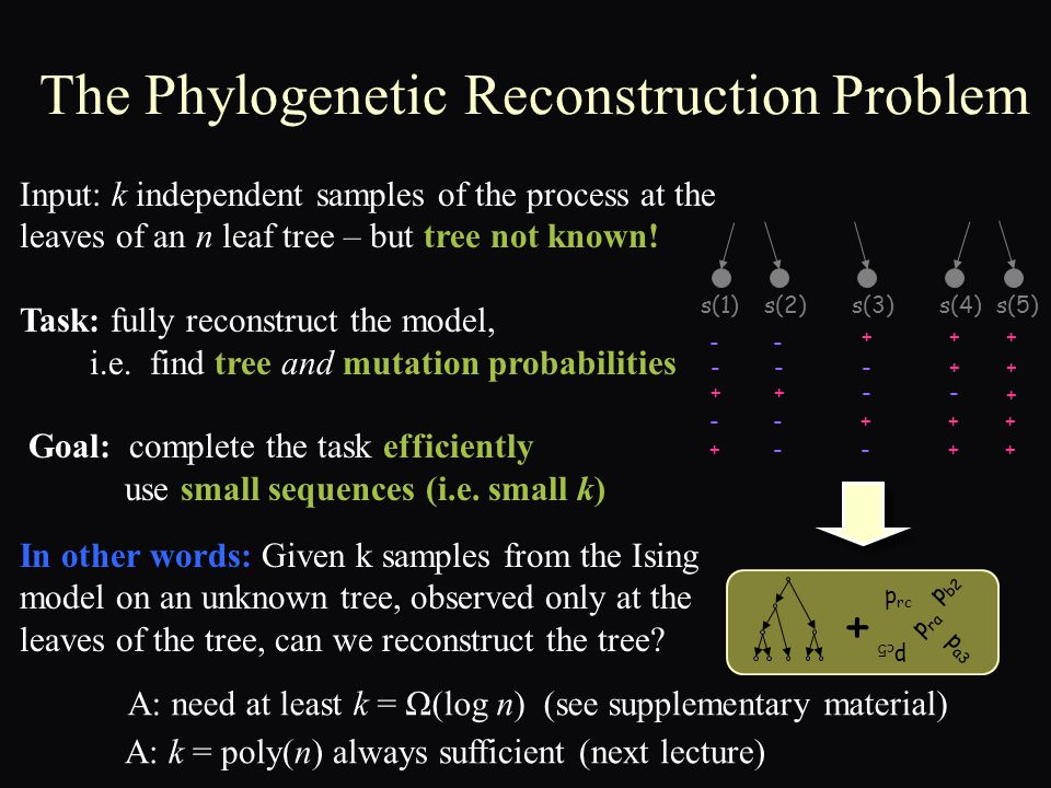 The Phylogenetic Reconstruction Problem Input: k independent samples of the process at the leaves of an n leaf tree – but tree not known.