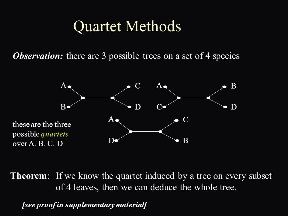 Quartet Methods Theorem: Observation: there are 3 possible trees on a set of 4 species A B C D A C B D A D C B If we know the quartet induced by a tree on every subset of 4 leaves, then we can deduce the whole tree.