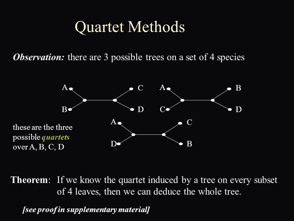 a simple Markov model on a tree