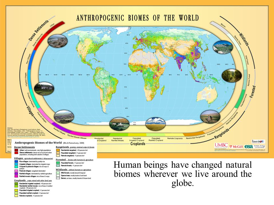 Anthropogenic Biomes Human beings have changed natural biomes wherever we live around the globe.