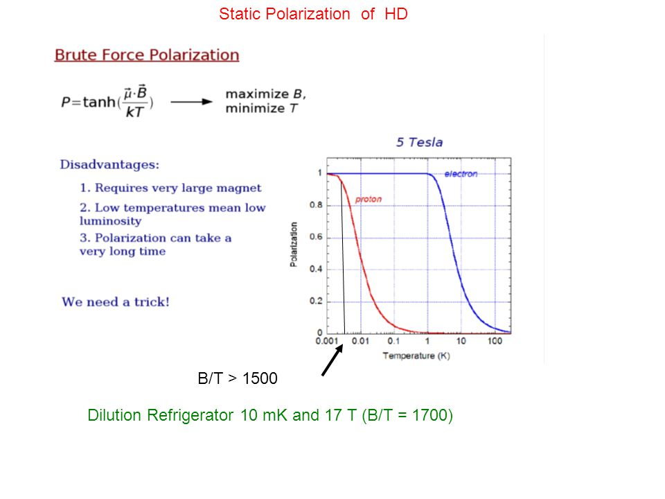 Static Polarization of HD B/T > 1500 Dilution Refrigerator 10 mK and 17 T (B/T = 1700)