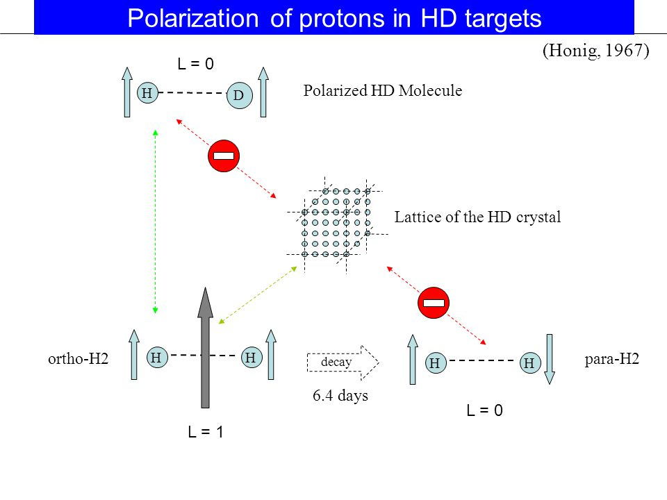 H D Lattice of the HD crystal Polarized HD Molecule HH ortho-H2 6.4 days HH para-H2 decay (Honig, 1967) Polarization of protons in HD targets L = 1 L = 0
