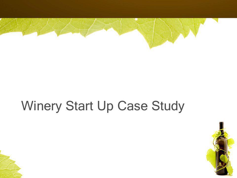 Winery Start Up Case Study