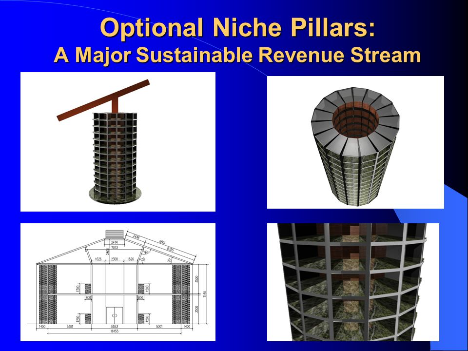 Optional Niche Pillars: A Major Sustainable Revenue Stream