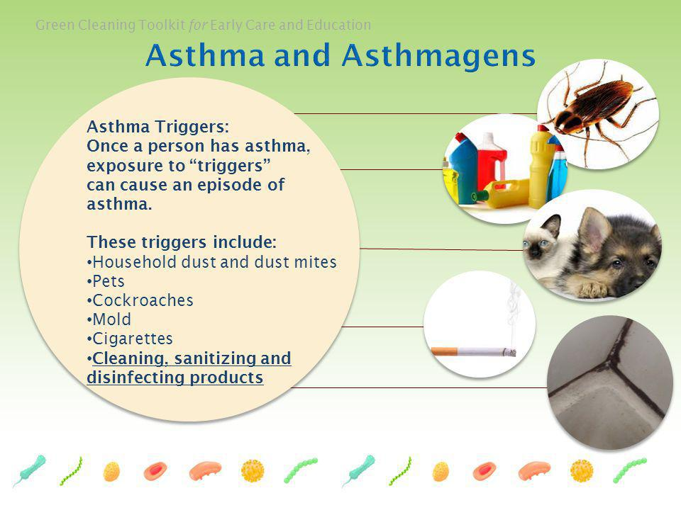 Green Cleaning Toolkit for Early Care and Education Asthma Triggers: Once a person has asthma, exposure to triggers can cause an episode of asthma. Th