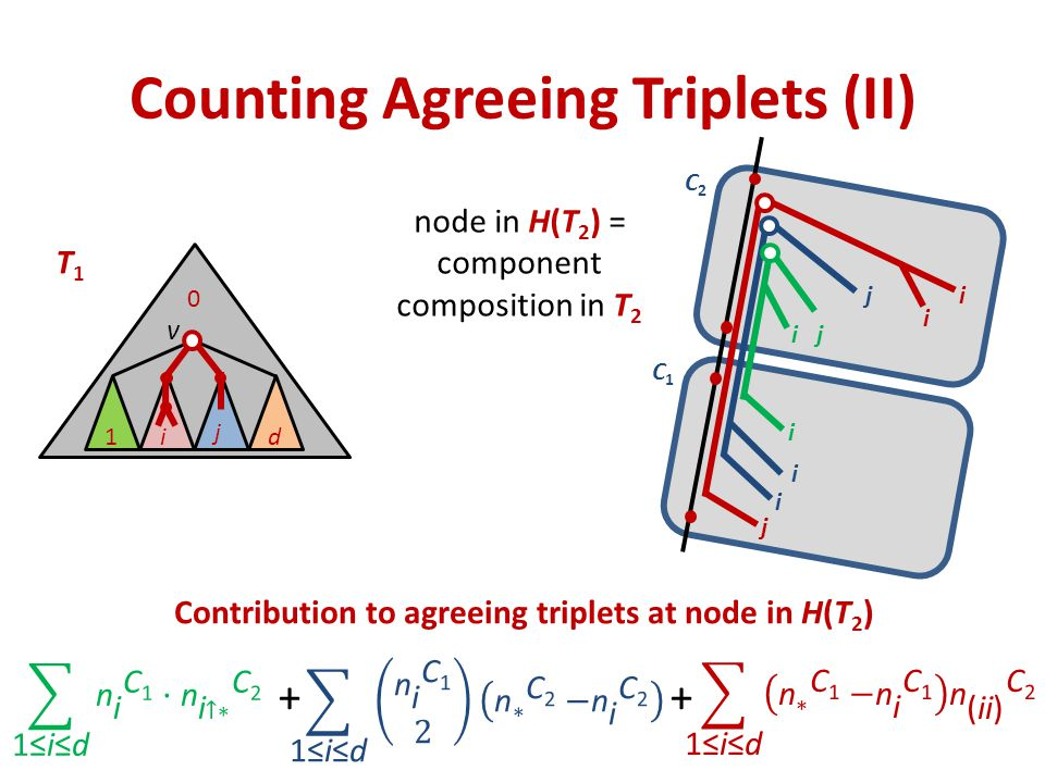 Counting Agreeing Triplets (II) v 1i j d T1T1 0 node in H(T 2 ) = component composition in T 2 + Contribution to agreeing triplets at node in H(T 2 ) i ij i i j j i i C2C2 C1C1