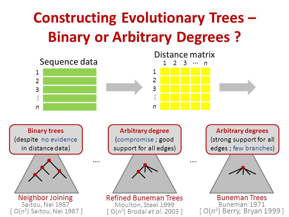 Constructing Evolutionary Trees – Binary or Arbitrary Degrees .