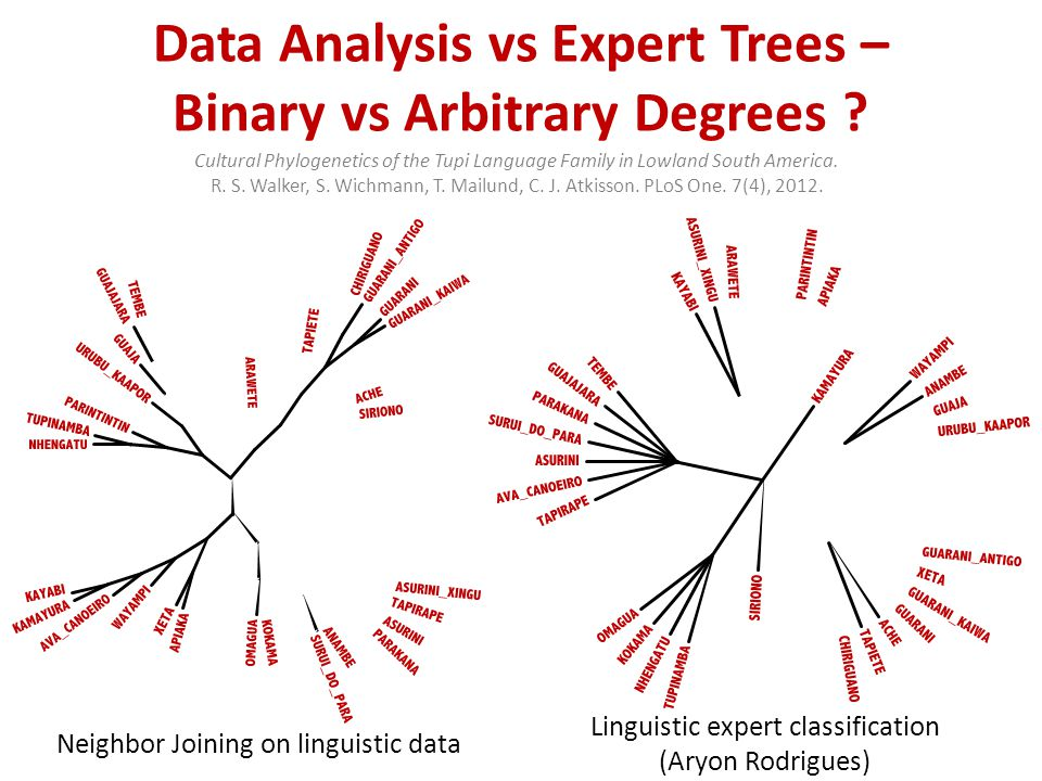 Data Analysis vs Expert Trees – Binary vs Arbitrary Degrees .