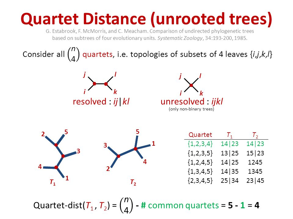 Triplet Distance (rooted trees) TripletT1T1 T2T2 {1,2,3}2|13 {1,2,4}1|244|12 {1,2,5}1|255|12 {1,3,4}4|13 {1,3,5}5|13 {1,4,5}1|45 {2,3,4}3|244|23 {2,3,5}3|255|23 {2,4,5}5|242|45 {3,4,5}3|45 resolved : k|ij ij k i j k unresolved : ijk (only non-binary trees) 1 2 5 3 T1T1 4 4 1 5 2 T2T2 3 D.