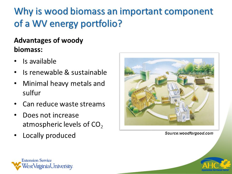 Why is wood biomass an important component of a WV energy portfolio.