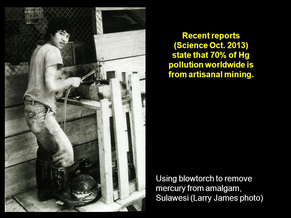 Using blowtorch to remove mercury from amalgam, Sulawesi (Larry James photo) Recent reports (Science Oct.