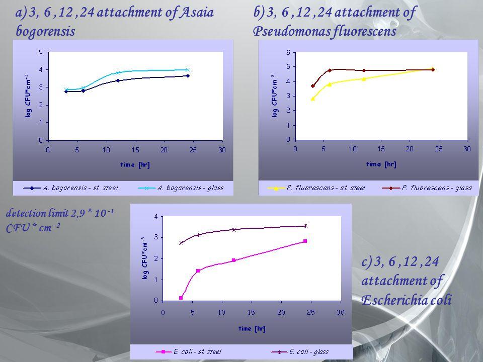 detection limit 2,9 * 10 -1 CFU * cm -2 a) 3, 6,12,24 attachment of Asaia bogorensis b) 3, 6,12,24 attachment of Pseudomonas fluorescens c) 3, 6,12,24