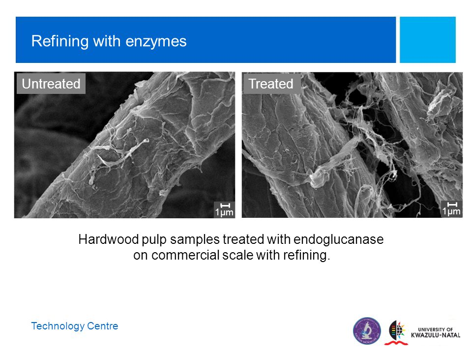 Technology Centre Refining with enzymes 1µm Hardwood pulp samples treated with endoglucanase on commercial scale with refining.