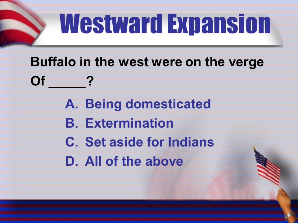 Westward Expansion Buffalo in the west were on the verge Of _____? A.Being domesticated B.Extermination C.Set aside for Indians D.All of the above