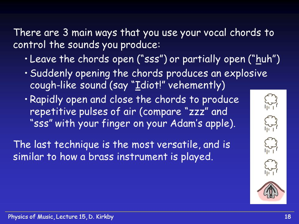 Physics of Music, Lecture 15, D. Kirkby18 There are 3 main ways that you use your vocal chords to control the sounds you produce: Leave the chords ope