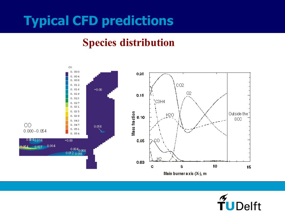 Typical CFD predictions Species distribution