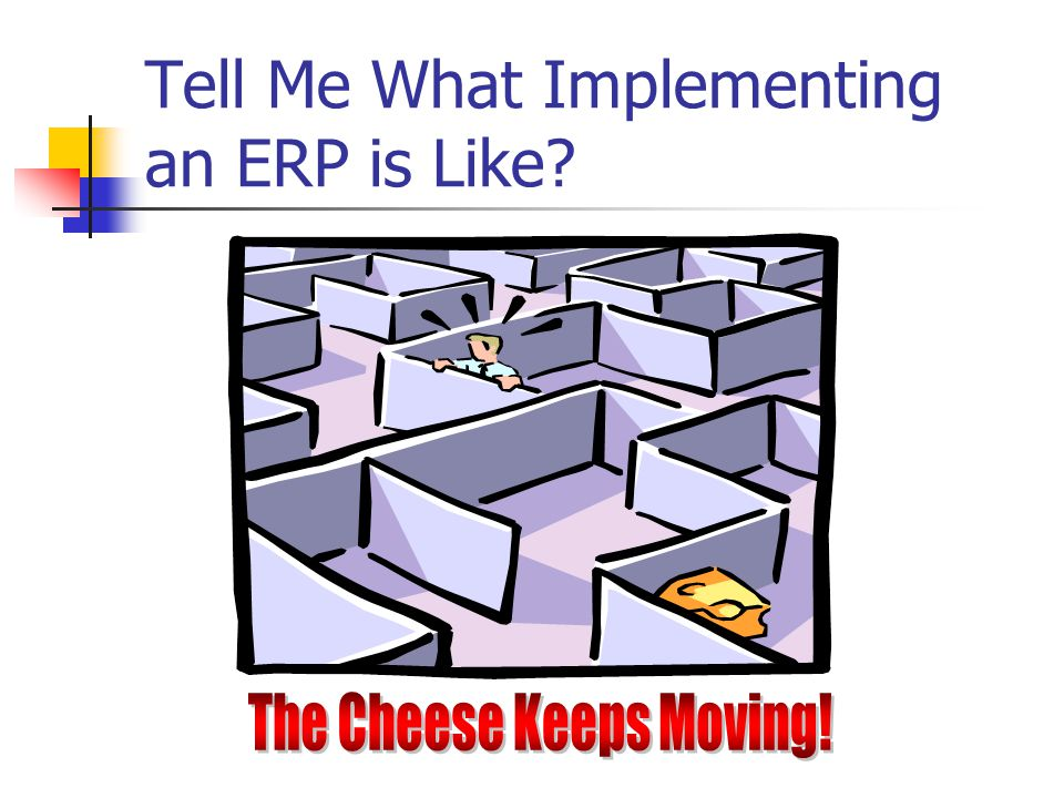 Tell Me What Implementing an ERP is Like?