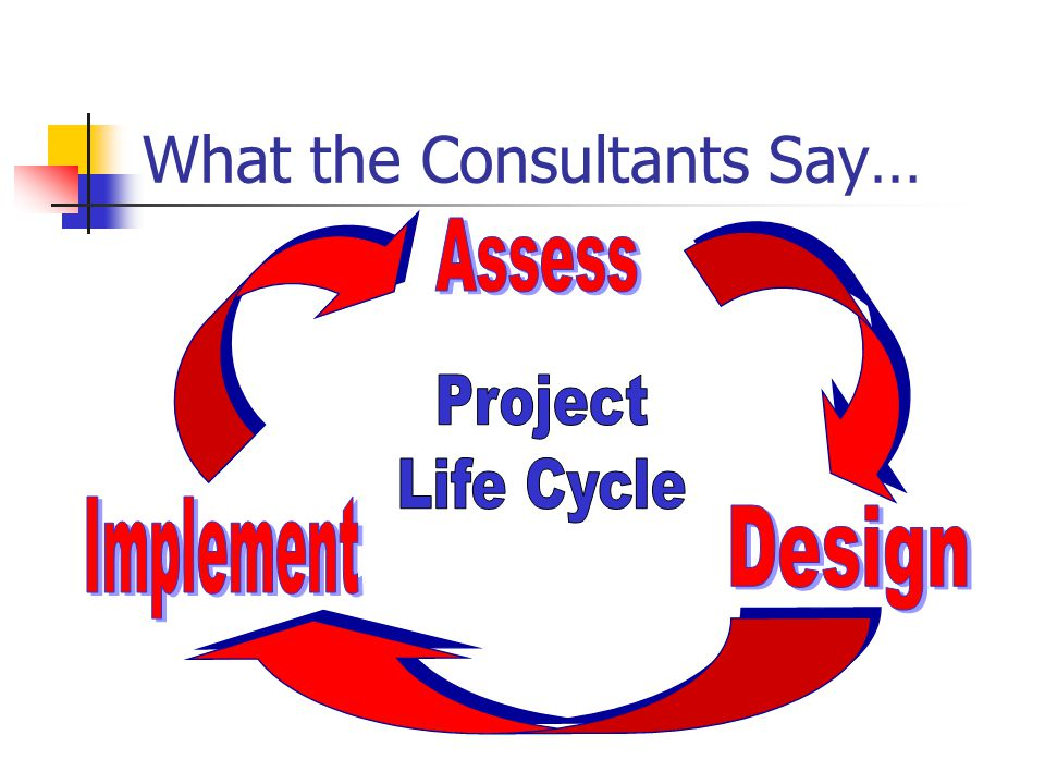 What the Consultants Say…