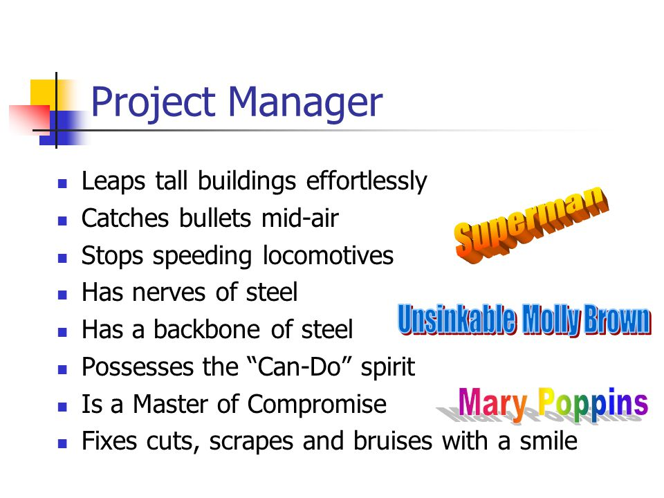 Project Manager Leaps tall buildings effortlessly Catches bullets mid-air Stops speeding locomotives Has nerves of steel Has a backbone of steel Possesses the Can-Do spirit Is a Master of Compromise Fixes cuts, scrapes and bruises with a smile