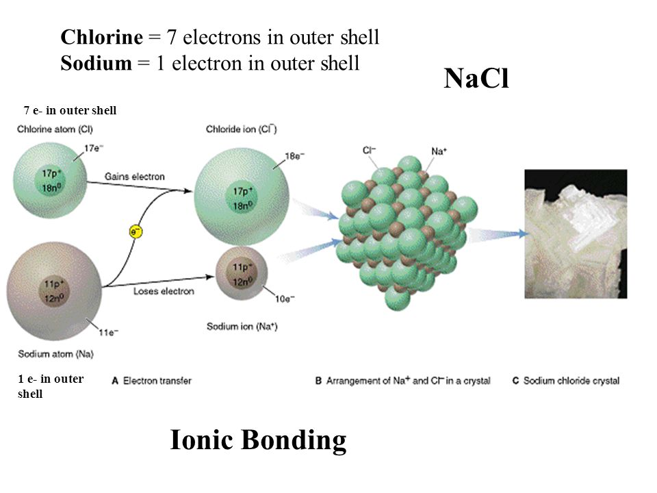 Chlorine = 7 electrons in outer shell Sodium = 1 electron in outer shell NaCl Ionic Bonding 7 e- in outer shell 1 e- in outer shell