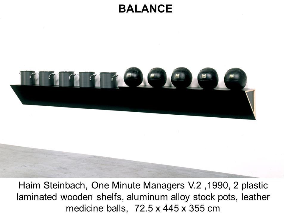 Haim Steinbach, One Minute Managers V.2,1990, 2 plastic laminated wooden shelfs, aluminum alloy stock pots, leather medicine balls, 72.5 x 445 x 355 c