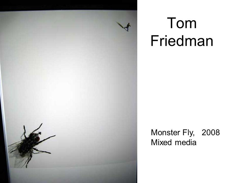 Tom Friedman Monster Fly, 2008 Mixed media