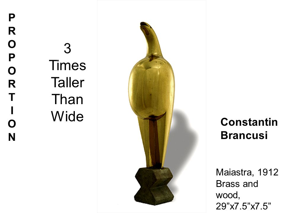 PRO POR TION Constantin Brancusi Maiastra, 1912 Brass and wood, 29x7.5x7.5 3 Times Taller Than Wide PROPORTION PROPORTIONPROPORTION