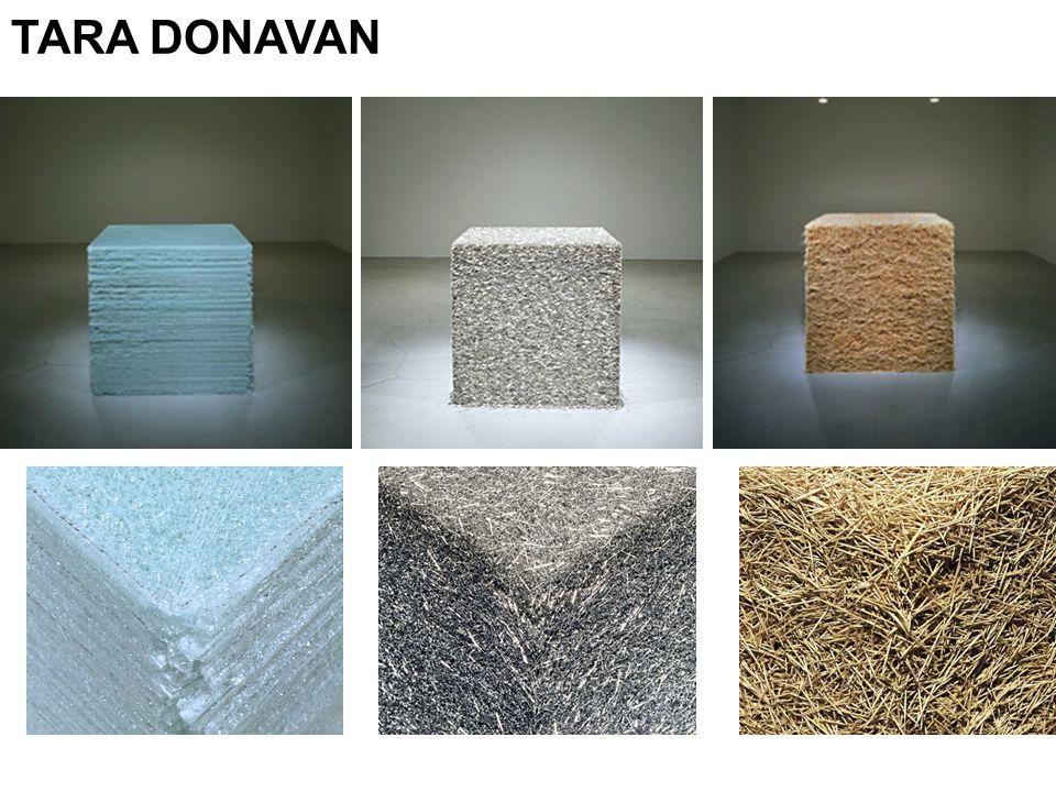 TARA DONAVAN