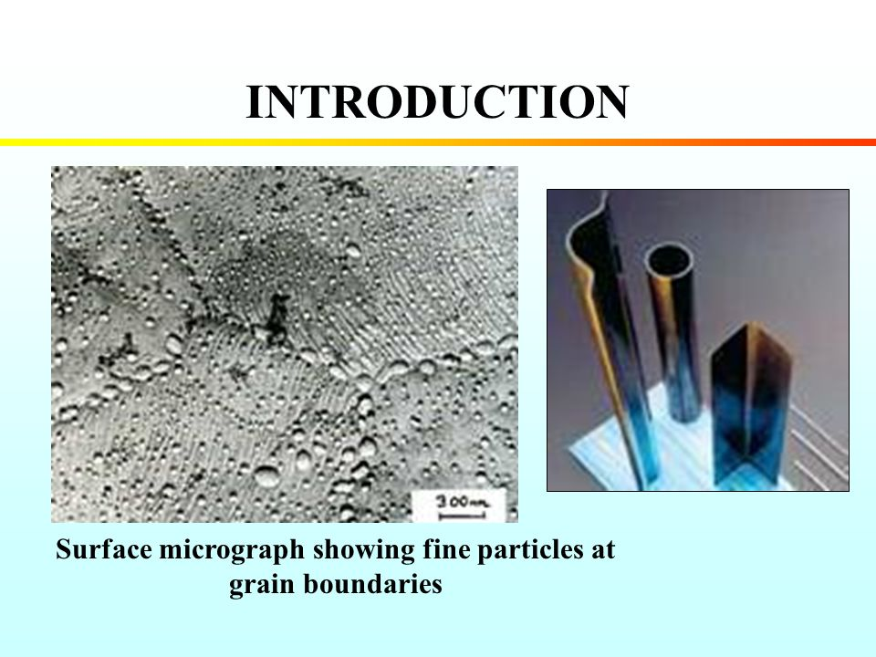 INTRODUCTION Surface micrograph showing fine particles at grain boundaries