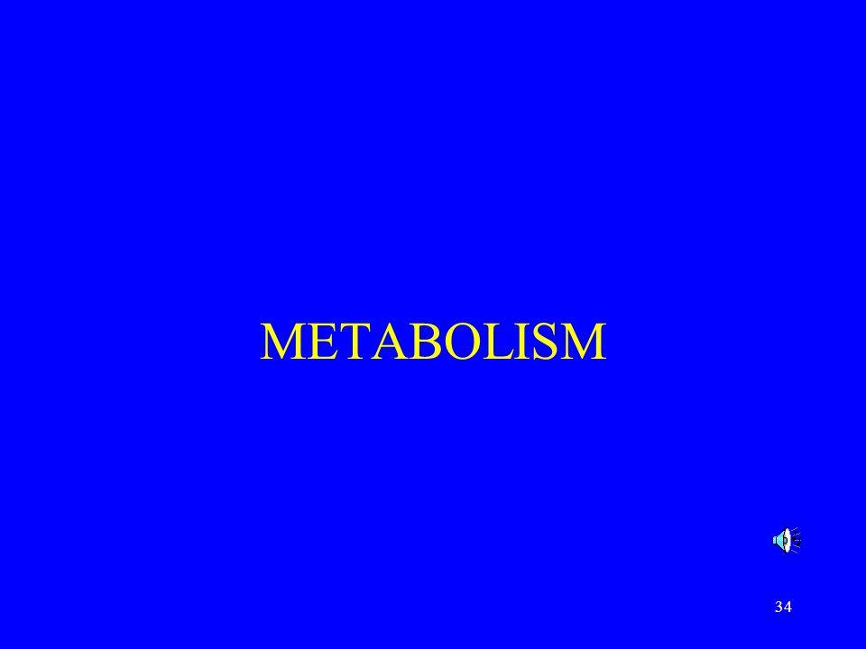 34 METABOLISM