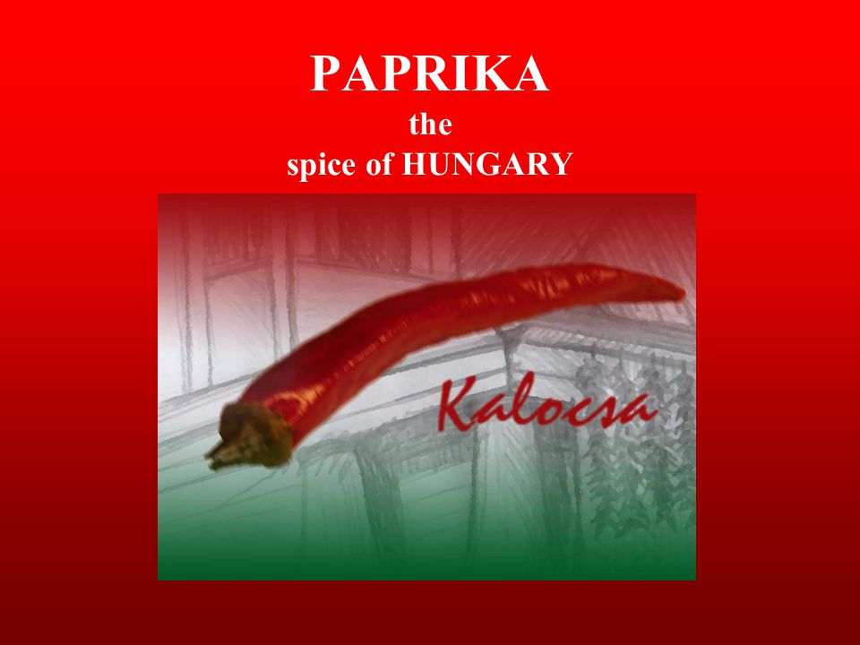 PAPRIKA the spice of HUNGARY
