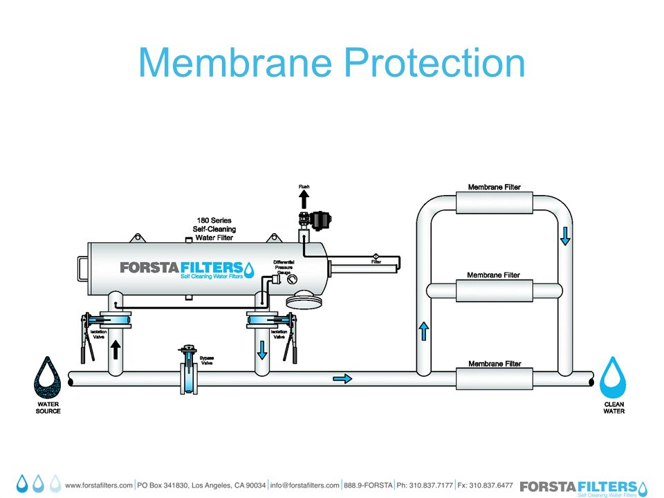 Membrane Protection