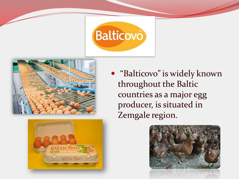 Balticovo is widely known throughout the Baltic countries as a major egg producer, is situated in Zemgale region.