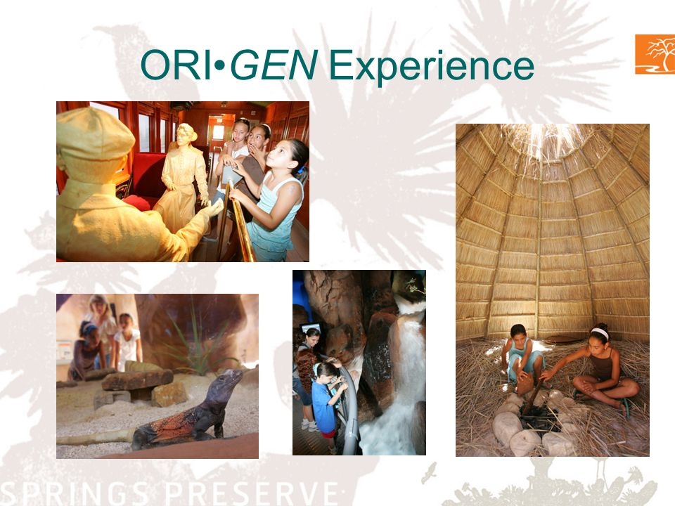 ORIGEN Experience