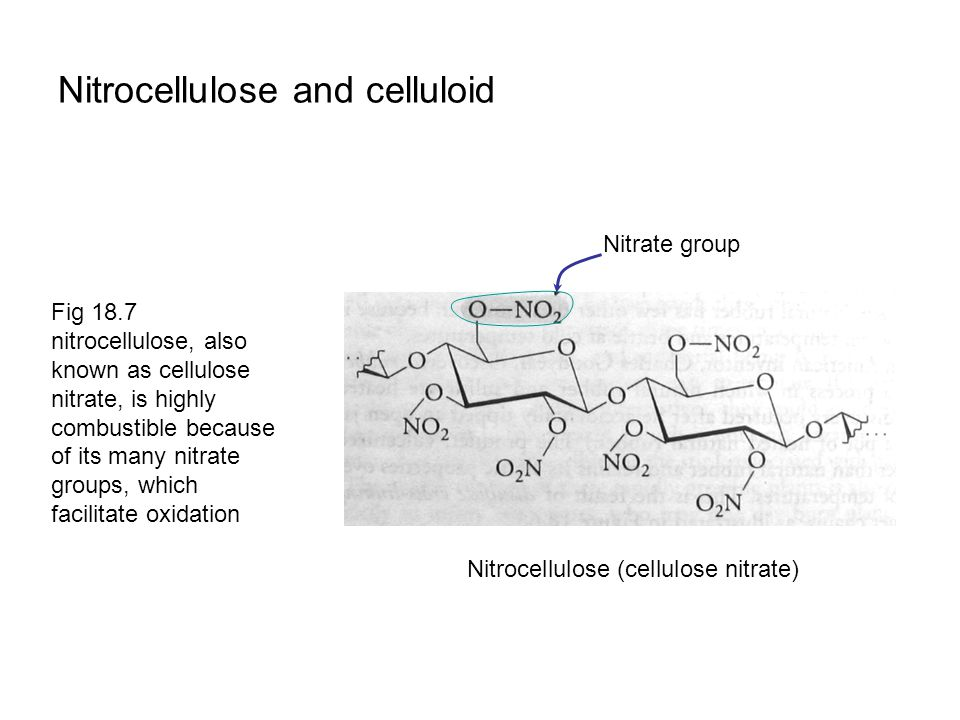 Nitrocellulose and celluloid Fig 18.7 nitrocellulose, also known as cellulose nitrate, is highly combustible because of its many nitrate groups, which facilitate oxidation Nitrate group Nitrocellulose (cellulose nitrate)