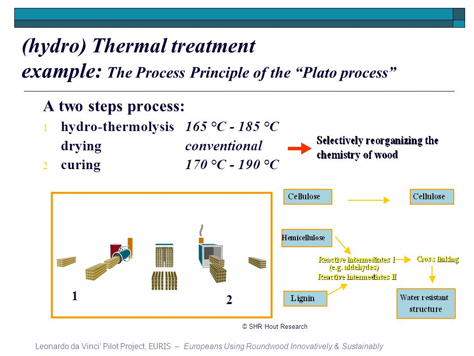 A two steps process: 1 hydro-thermolysis165 °C °C dryingconventional 2 curing170 °C °C 1 2 (hydro) Thermal treatment example: The Process Principle of the Plato process Leonardo da Vinci Pilot Project, EURIS – Europeans Using Roundwood Innovatively & Sustainably © SHR Hout Research