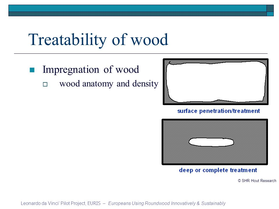 Treatability of wood Impregnation of wood wood anatomy and density Leonardo da Vinci Pilot Project, EURIS – Europeans Using Roundwood Innovatively & Sustainably © SHR Hout Research