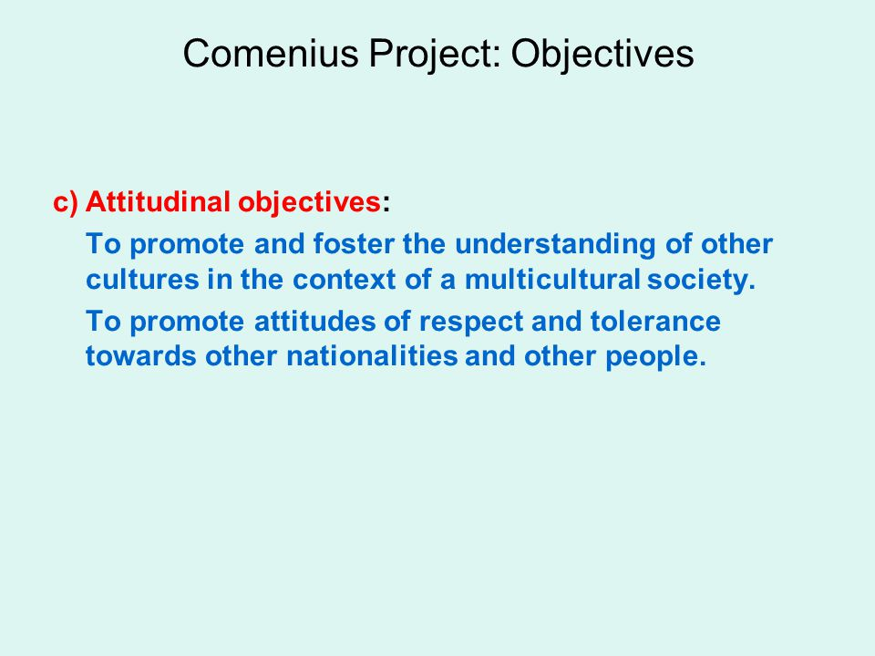 Comenius Project: Objectives c)Attitudinal objectives: To promote and foster the understanding of other cultures in the context of a multicultural society.