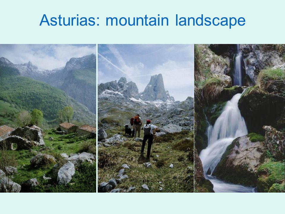 Asturias: mountain landscape