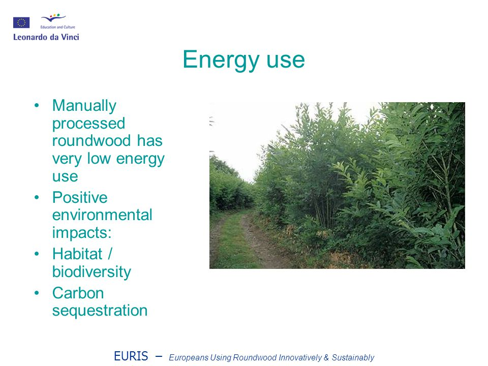 EURIS – Europeans Using Roundwood Innovatively & Sustainably Energy use Manually processed roundwood has very low energy use Positive environmental impacts: Habitat / biodiversity Carbon sequestration