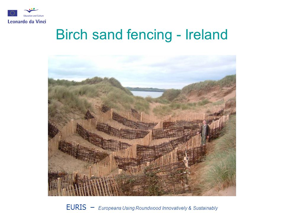 EURIS – Europeans Using Roundwood Innovatively & Sustainably Birch sand fencing - Ireland