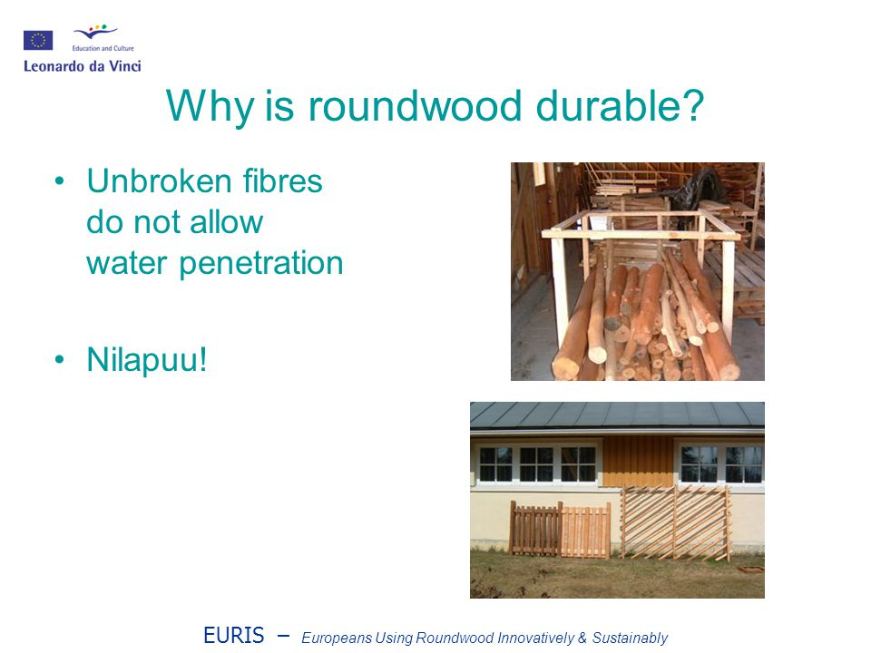 EURIS – Europeans Using Roundwood Innovatively & Sustainably Why is roundwood durable.