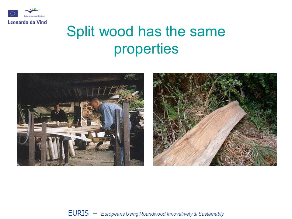 EURIS – Europeans Using Roundwood Innovatively & Sustainably Split wood has the same properties