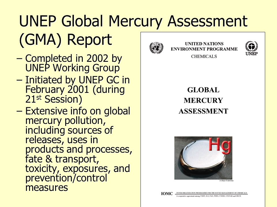 UNEP Global Mercury Assessment (GMA) Report –Completed in 2002 by UNEP Working Group –Initiated by UNEP GC in February 2001 (during 21 st Session) –Extensive info on global mercury pollution, including sources of releases, uses in products and processes, fate & transport, toxicity, exposures, and prevention/control measures
