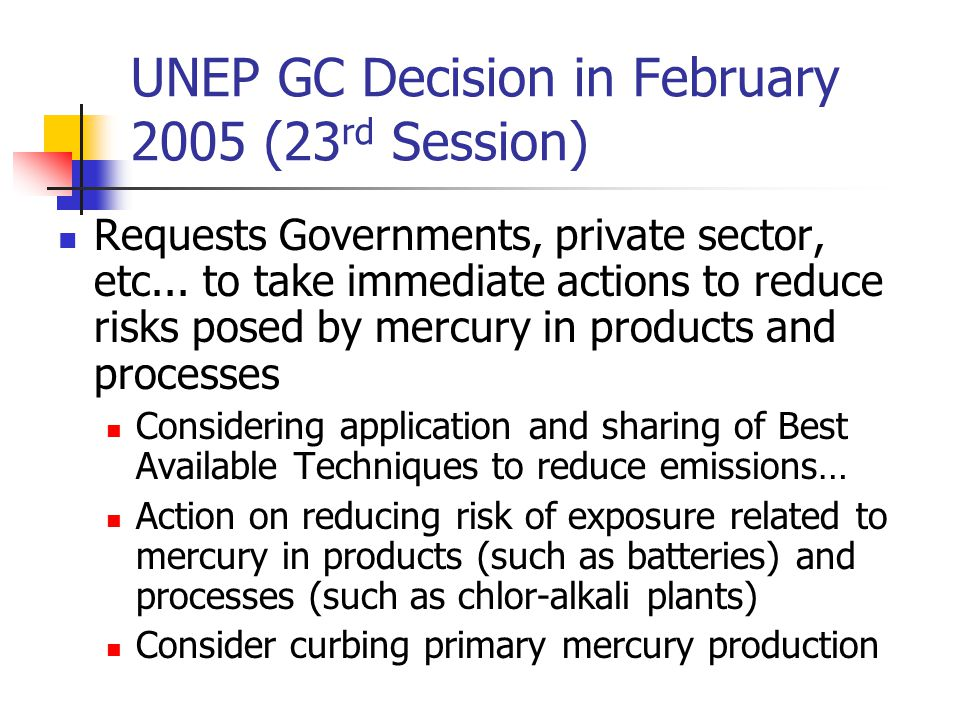 UNEP GC Decision in February 2005 (23 rd Session) Requests Governments, private sector, etc...