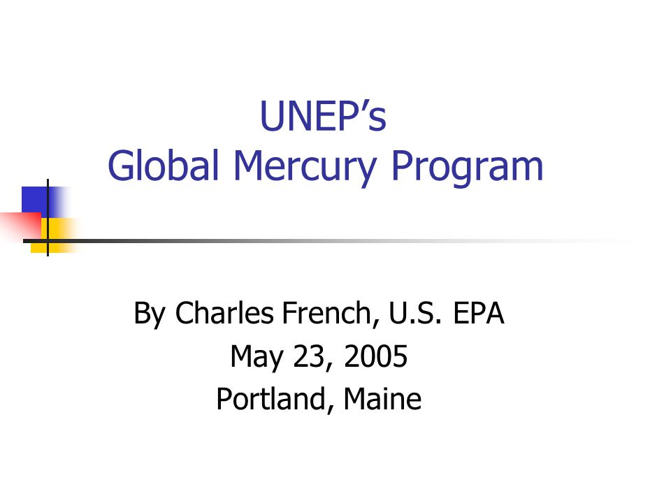 For More Information See UNEP Mercury website: www.chem.unep.ch/mercury /