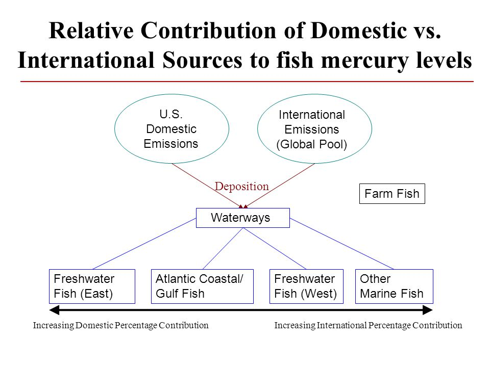 Relative Contribution of Domestic vs.