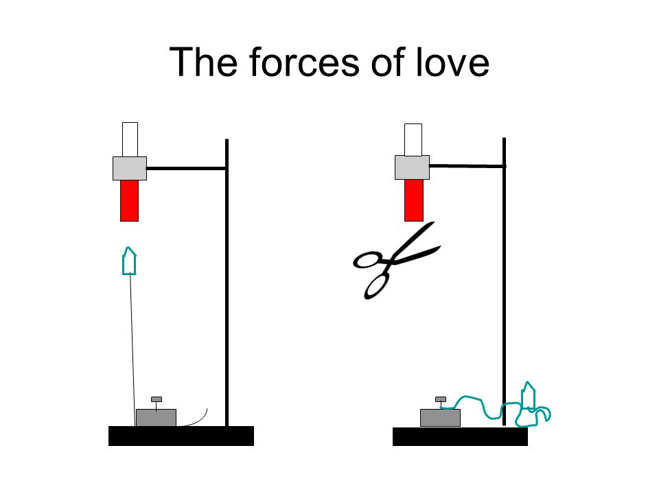 The forces of love